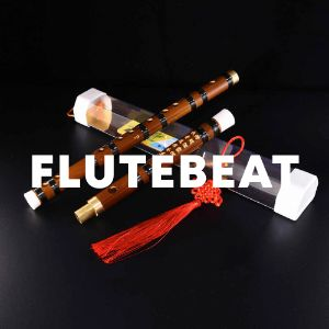 Flutebeat cover