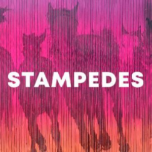 Stampedes cover