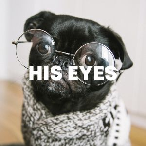 His Eyes cover