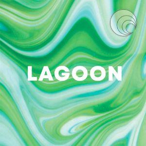 Lagoon cover